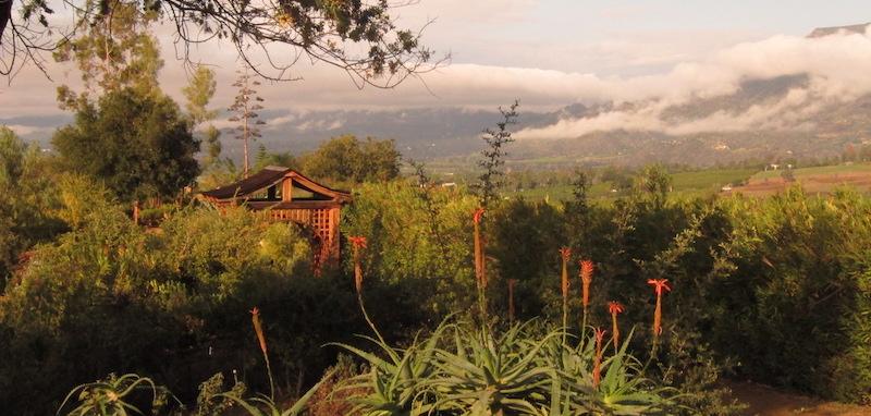 Meditation Mount Ojai